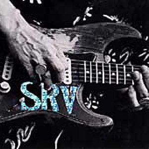 Image courtesy of http://upload.wikimedia.org/wikipedia/en/f/fe/Stevie_Ray_Vaughan_Carnegie_Hall.jpg
