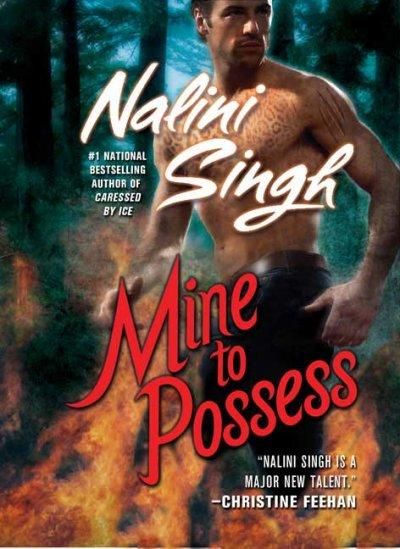 Mine to Possess (Paperback)