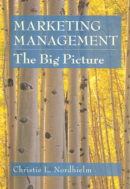 Marketing Management: The Big Picture (Paperback)