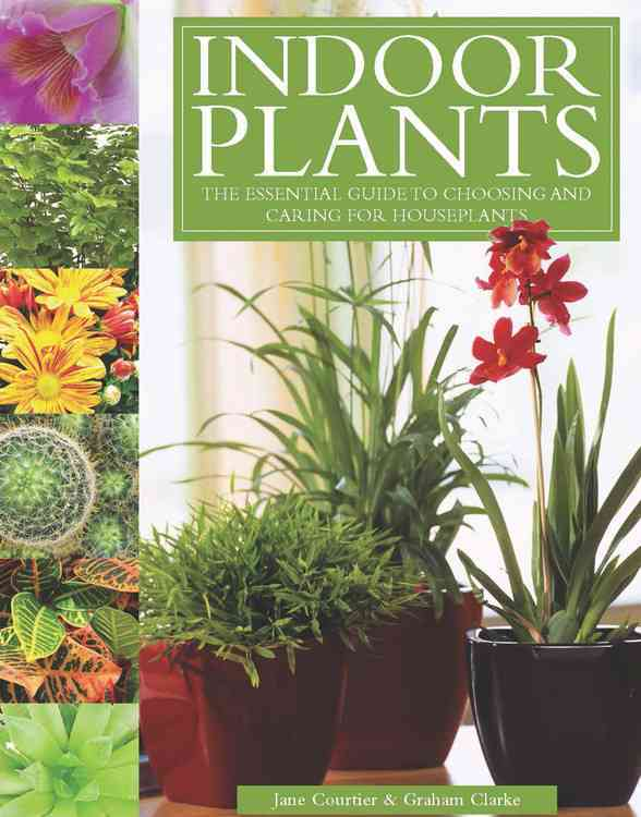 Indoor Plants: The Essential Guide to Choosing and Caring for Houseplants (Hardcover)