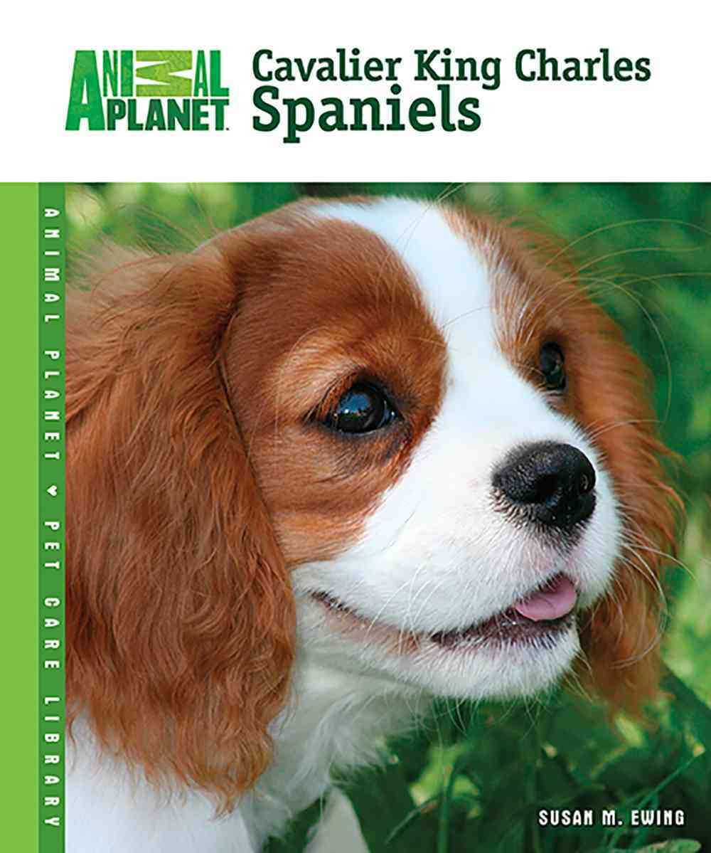 Cavalier King Charles Spaniels (Hardcover)