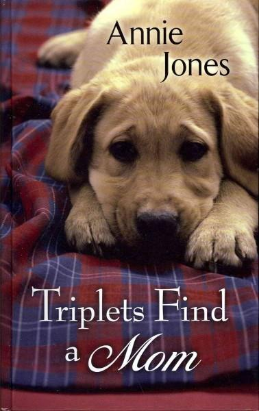 Triplets Find a Mom (Hardcover)