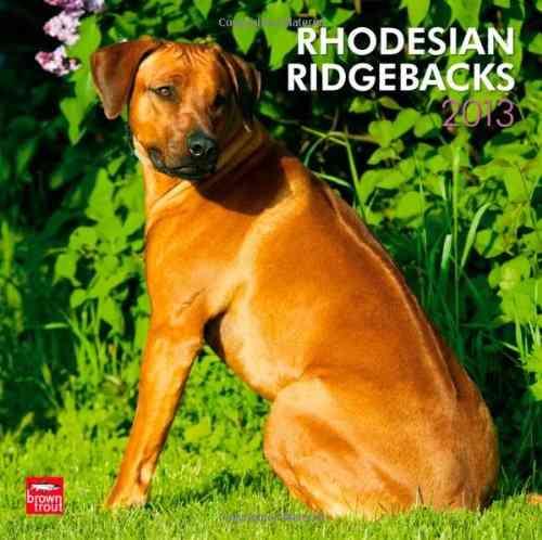 Rhodesian Ridgebacks 2013 Calendar (Calendar)