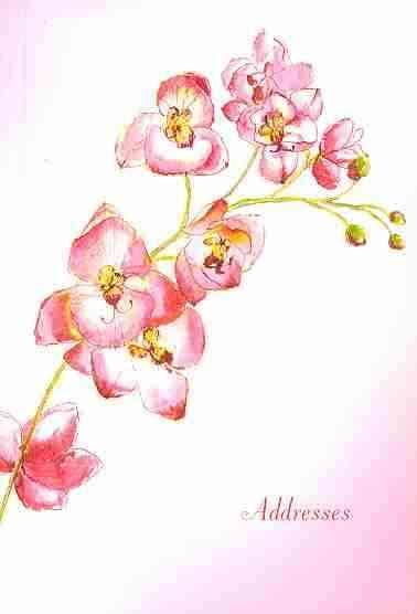 Orchid Address Book (Spiral bound)