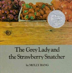 The Grey Lady and the Strawberry Snatcher (Hardcover)