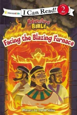 Facing the Blazing Furnace (Paperback)