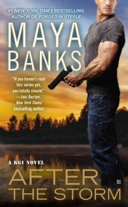 After the Storm (Paperback)