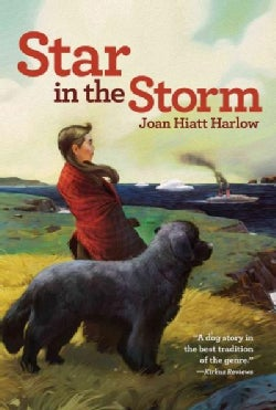 Star in the Storm (Paperback)