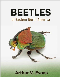 Beetles of Eastern North America (Paperback)