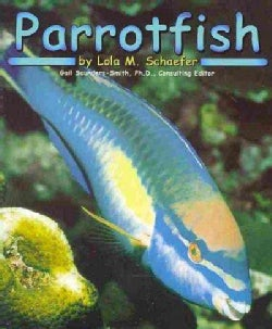 Parrotfish (Paperback)