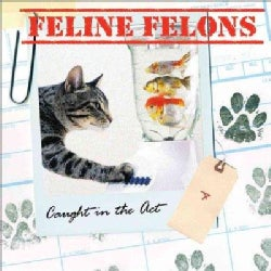 Feline Felons: Caught in the Act (Hardcover)