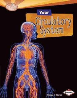 Your Circulatory System (Hardcover)