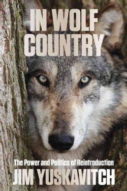 In Wolf Country: The Power and Politics of Reintroduction (Paperback)