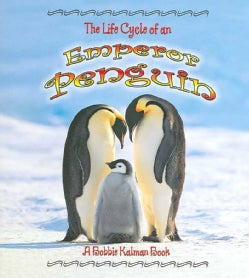 The Life Cycle of an Emperor Penguin (Paperback)