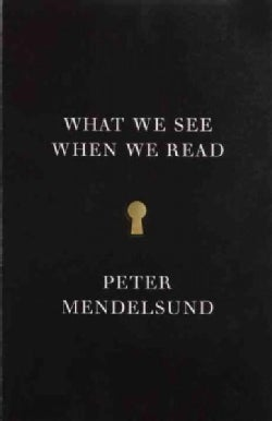 What We See When We Read: A Phenomenology (Paperback)