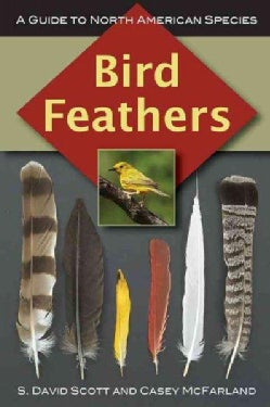 Bird Feathers: A Guide to North American Species (Paperback)