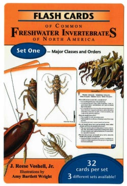 Flash Cards of Common Freshwater Invertebrates of North America: Set One - Major Classes and Orders