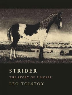 Strider: The Story of a Horse (Hardcover)
