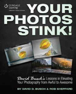 Your Photos Stink!: David Busch's Lessons in Elevating Your Photography from Awful to Awesome (Paperback)