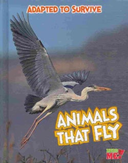 Animals That Fly (Hardcover)