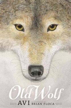 Old Wolf (Hardcover)