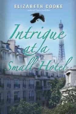 Intrigue at a Small Hotel (Hardcover)