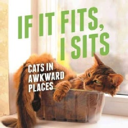 If It Fits, I Sits: Cats in Awkward Places (Hardcover)