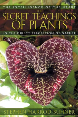 The Secret Teachings Of Plants: The Intelligence Of The Heart In The Direct Perception Of Nature (Paperback)