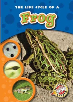 The Life Cycle of a Frog (Hardcover)