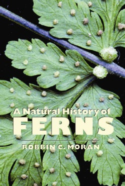 A Natural History of Ferns (Paperback)