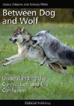 Between Dog and Wolf: Understanding the Connection and the Confusion (Paperback)
