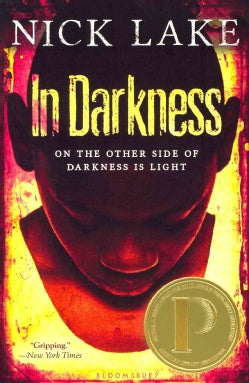 In Darkness (Paperback)