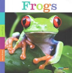 Frogs (Paperback)