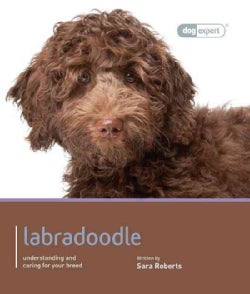 Labradoodle: Understanding and caring for your dog (Paperback)