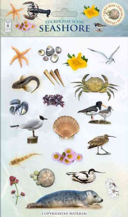 Seashore (Other book format)