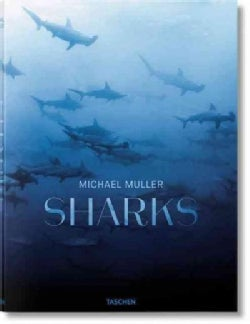 Michael Muller: Sharks, Face-to Face With the Ocean's Endangered Predator (Hardcover)