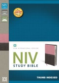 NIV Study Bible: New International Version, Berry Creme/Chocolate, Italian Duo-Tone (Paperback)
