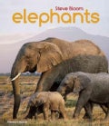 Elephants: A Book for Children (Paperback)