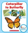 Caterpillar to Butterfly (Hardcover)
