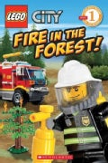 Fire in the Forest! (Paperback)