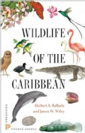 Wildlife of the Caribbean (Paperback)
