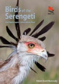 Birds of the Serengeti and Ngorongoro Conservation Area (Paperback)