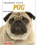 Training Your Pug (Paperback)
