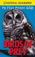 Birds of Prey (Paperback)