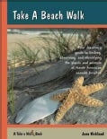 Take a Beach Walk (Paperback)