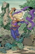 Sword and Sorcery 1: Amethyst (The New 52) (Paperback)