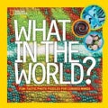 What in the World?: Fun-tastic Photo Puzzles for Curious Minds (Hardcover)