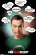 Big Bang Theory: Quotes (Poster)