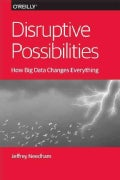 Disruptive Possibilities: How Big Data Changes Everything (Paperback)