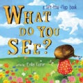 What Do You See?: A Lift-the-Flap Book (Board book)